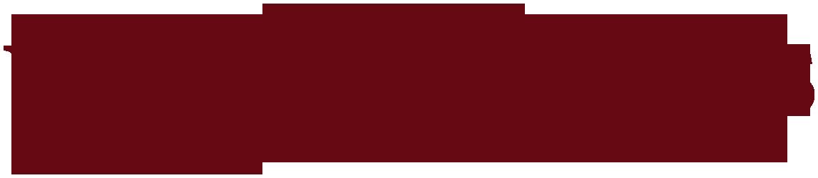 WNT logo-PNG